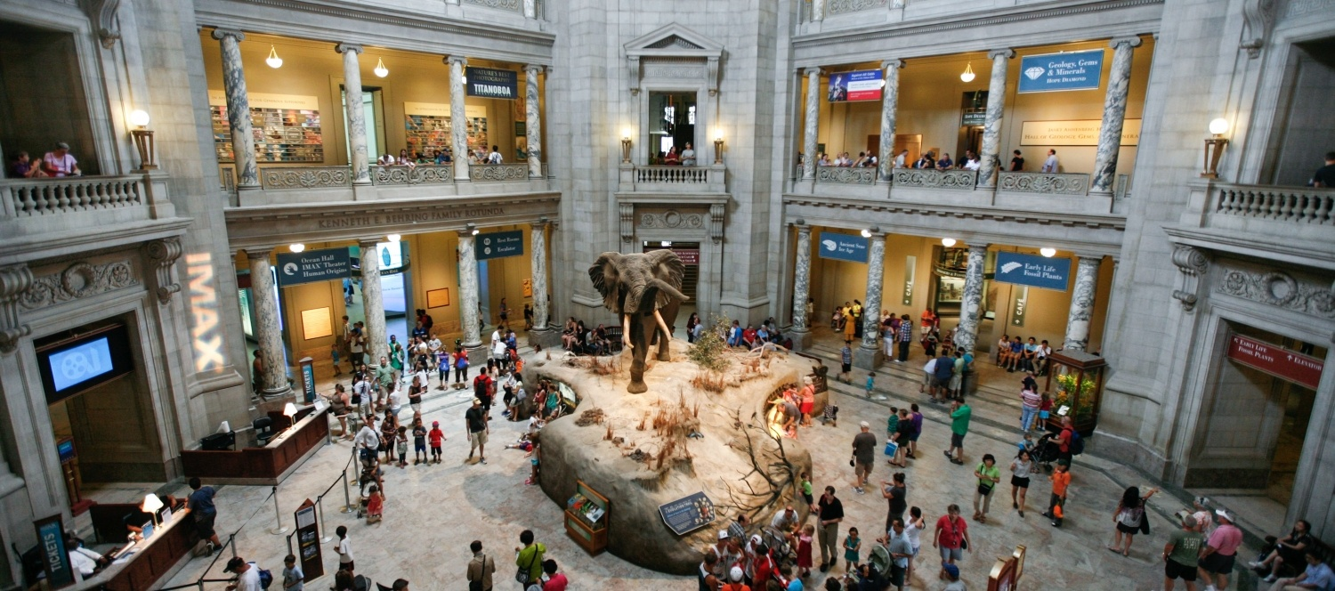 Smithsonian Institution National Museum of Natural History © Alex Proimos
